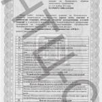 сертифика 2